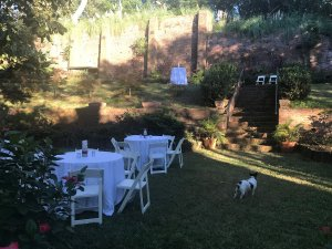 event tables in garden