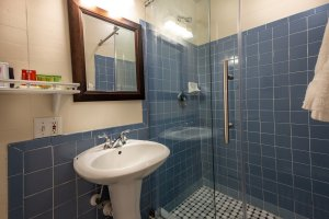 bathroom and shower with blue tiles