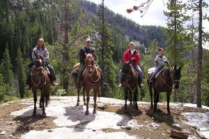 Four riders and horses in a line