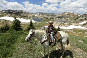 Cowboy on a horse in wilderness