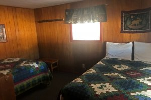 Two double beds with quilts