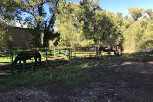 Horse Corrals with horses