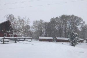 Cabins with wood fence in snow