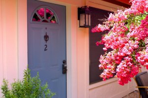 blue door and tree blossoms