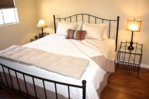iron bed-frame bed