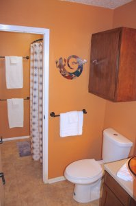 bathroom with gecko decor
