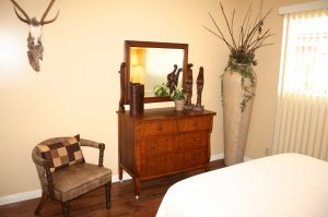 dresser and safair decor