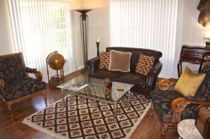 safari themed sitting area