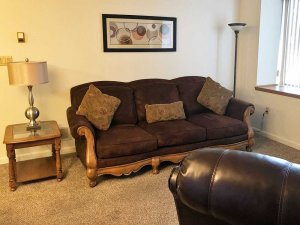 Comfortable Couch and End Table