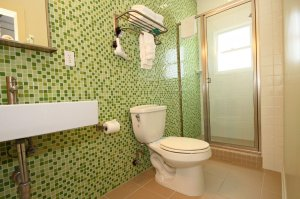 toilet and standing shower