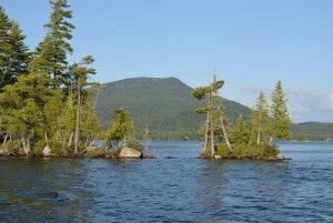 Trees on a Lake