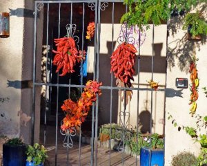 Red Chile Peppers on Gate