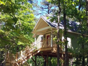 treehouse high in the trees