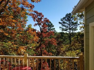 autumn leaves seen from wooden balcony