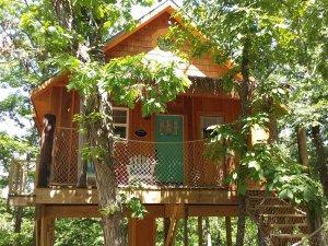 beach-themed treehouse