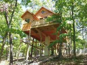 treehouse on stilts in the forest