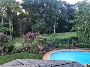 Circular swimming pool near lush lawn