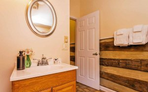 Bathroom with rustic wooden wall