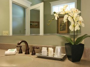 Potted-flower next to sink and mirror in bathroom