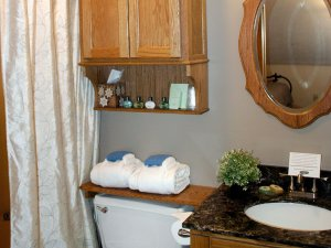Toilet, shower, cabinet, and sink in bathroom