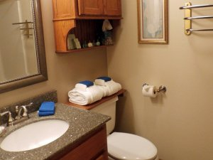 Sink next to toilet in bathroom