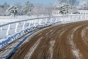 dirt horsetrack in the winter