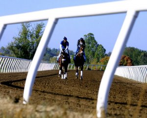 Two Jockey's riding on track