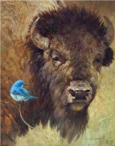 bison eyeing bluebird