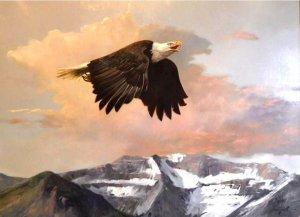 bald eagle flying over mountains
