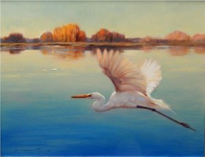 egrett taking flight