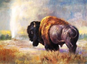 bison standing before geyser