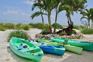Line of kayaks along the Atlantic shore