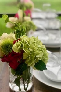 Green and red flowers in a vase