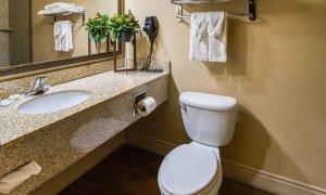 Toilet next to granite sink in bathroom
