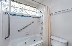 Bathtub and shower in bathroom