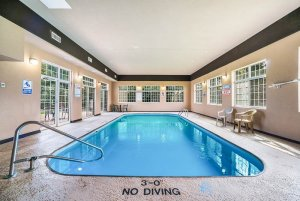No Diving sign near pool with ladder