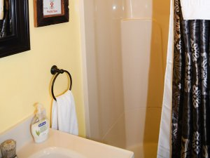 Hand towel, sink, and shower in bathroom