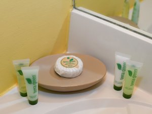 Soap on tray next to bottled lotions