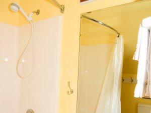 Showerhead in shower next to mirror