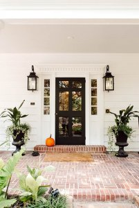 Potted plants next to front door to house