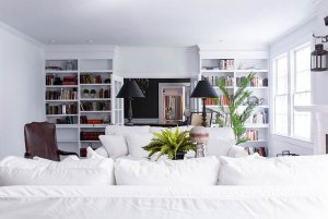 Couches and bookshelves in living room