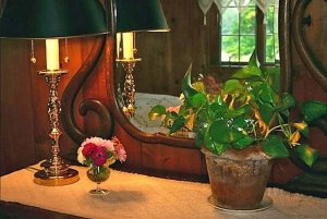 Green potted plant on dresser