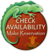 Emerald Iguana Check Availability Button