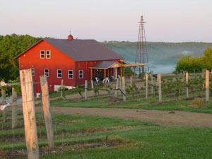 Vernon Vineyards Winery in Wisconsin