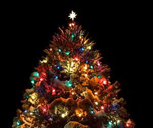 Winter Holiday Tree Lighting in Williams, Arizona