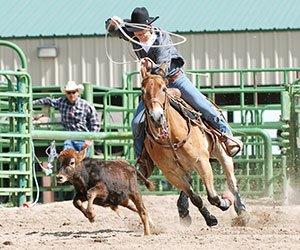 Rodeo Fun in Williams Arizona