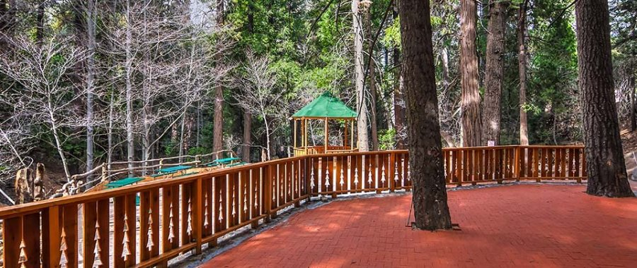 Special Event Area at Arrowhead Tree Top Lodge