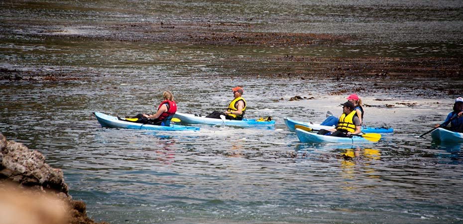 Four Kayakers out in the bay near White Water Inn