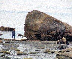 Alaska Beach