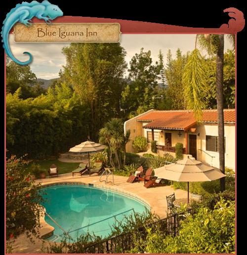 Blue Iguana Inn pool